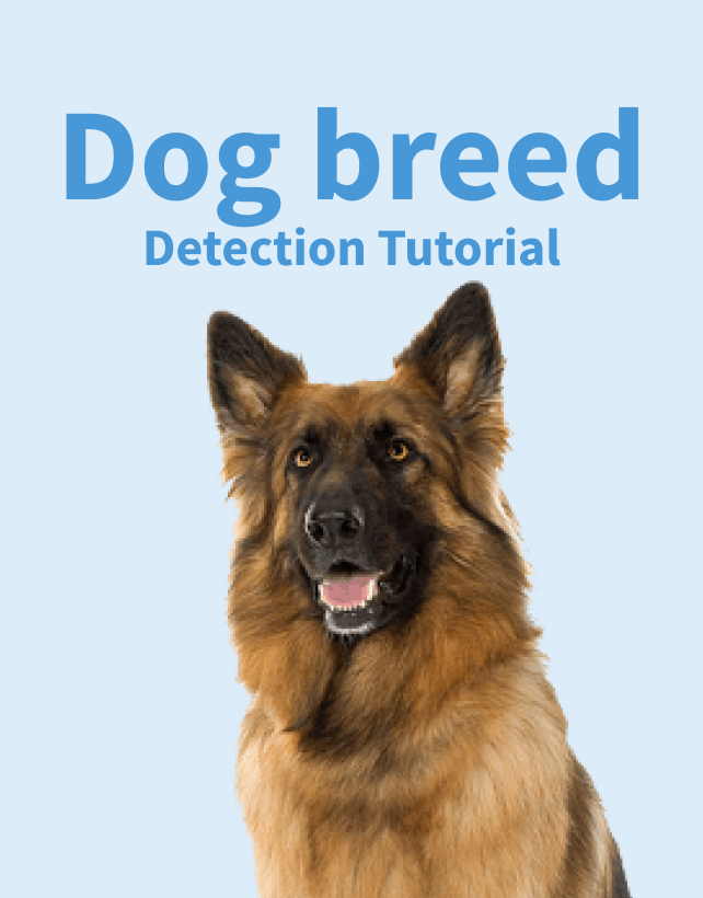 Dog Breed Object Detection Tutorial